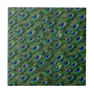 wild green peacock feathers ceramic tiles