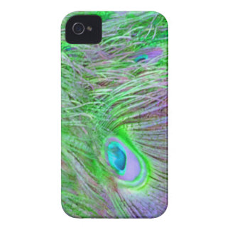 Wild Green Peacock Feathers iPhone 4 Covers