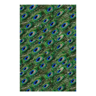 wild green peacock feathers stationery paper