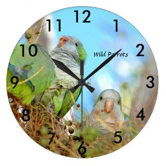 Wild green Quaker Parrots Wall Clock
