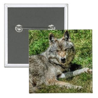 Wild Grey Wolf Animal-lover Design Pins
