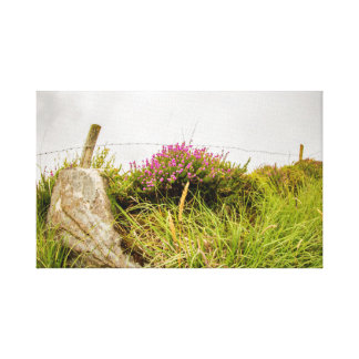 """Wild Heather"" canvas prints/wall art"