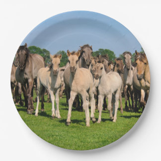 Wild Herd Dulmen Horses with Foals - Happy Party 9 Inch Paper Plate