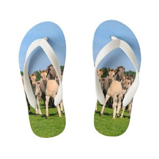 Wild Herd Grullo Colored Dulmen Horses Foals  Kids Kid's Flip Flops