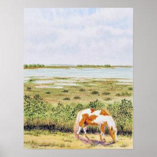 Wild Horse- Assateague Island Poster