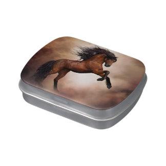 Wild Horse Candy Tin