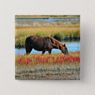 Wild Horse Eating In The Field 2 Inch Square Button