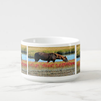 Wild Horse Eating In The Field Bowl
