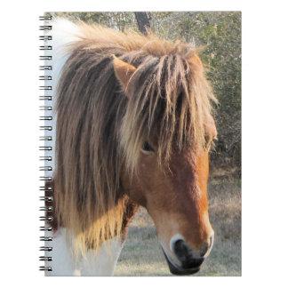 wild horse notebooks