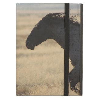 WILD HORSE OF UTAH iPad Air CASE