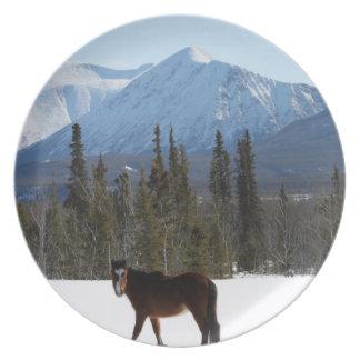 Wild Horse on Alaska Highway Plates