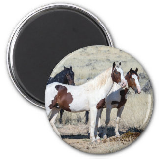 WILD HORSES 2 INCH ROUND MAGNET