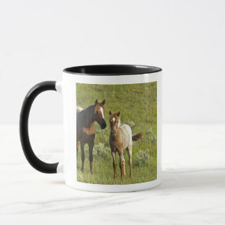 Wild Horses at Theodore Roosevelt National Mug