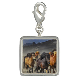 Wild Horses Charms
