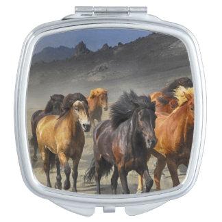 Wild Horses Compact Mirrors
