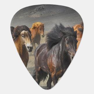 Wild Horses Guitar Pick