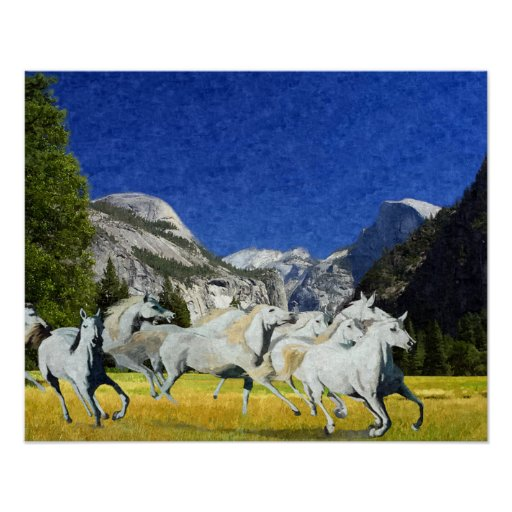 Wild Horses in Yosemite National Park Poster