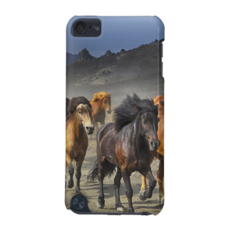 Wild Horses iPod Touch (5th Generation) Cases