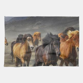 Wild Horses Kitchen Towel