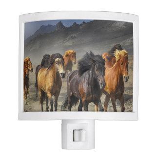 Wild Horses Nite Light