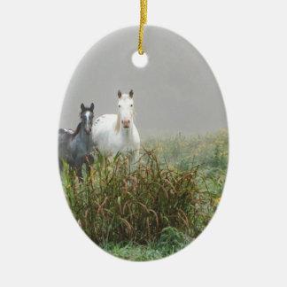 Wild Horses of Missouri Ceramic Oval Ornament