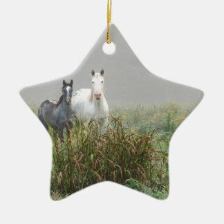 Wild Horses of Missouri Ceramic Star Ornament