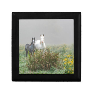 Wild Horses of Missouri Gift Box