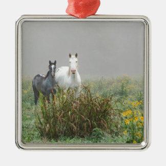 Wild Horses of Missouri Silver-Colored Square Ornament
