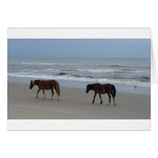 Wild Horses Outer Banks Card