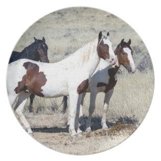 WILD HORSES PLATE