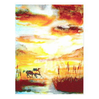 Wild Horses. Postcard