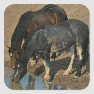 Wild Horses Square Sticker