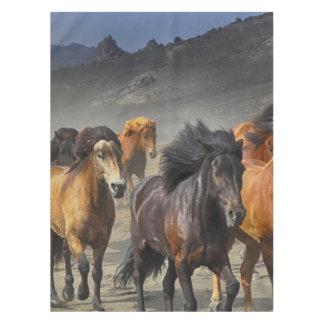 Wild Horses Tablecloth