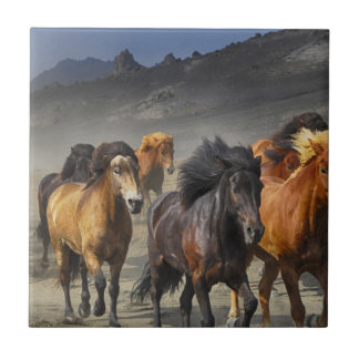 Wild Horses Tile