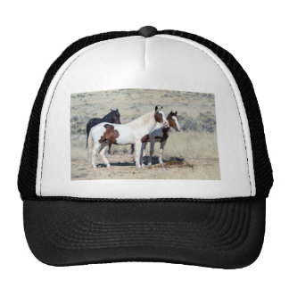 WILD HORSES TRUCKER HAT