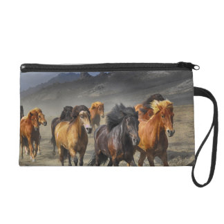 Wild Horses Wristlet