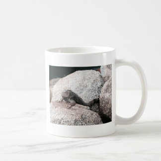 Wild Iguana Coffee Mug