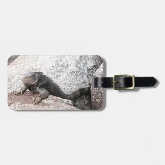 Wild Iguana Luggage Tag