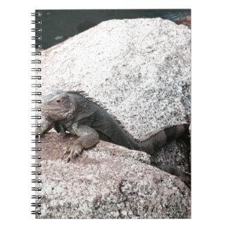 Wild Iguana Notebooks