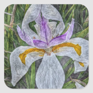 Wild Iris Stickers