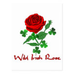 Wild Irish Rose Postcards
