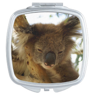 Wild koala sleeping on eucalyptus tree, Photo Compact Mirror