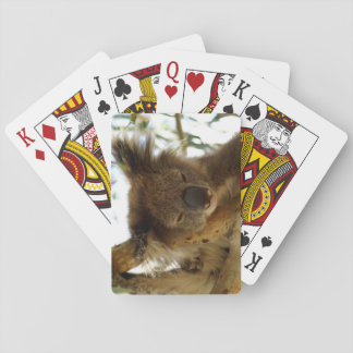Wild koala sleeping on eucalyptus tree, Photo Poker Deck