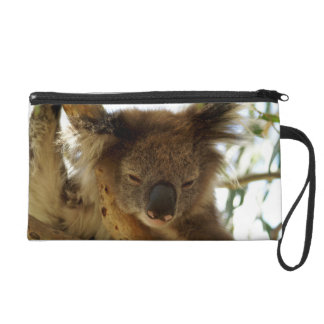 Wild koala sleeping on eucalyptus tree, Photo Wristlet