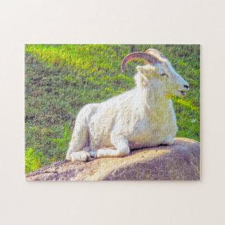 Wild Life Canada. Big Horn Sheep. Puzzle