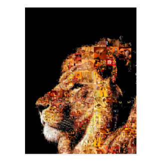 Wild lion - lion collage - lion mosaic - lion wild postcard