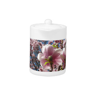 Wild magnolia 02.2