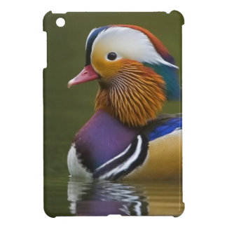 Wild Mandarin Duck Aix galericulata) on dark Case For The iPad Mini