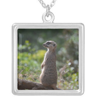 Wild Meerkat Silver Plated Necklace
