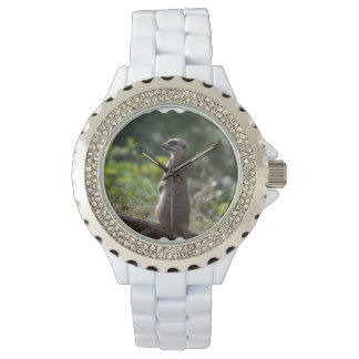 Wild Meerkat Wristwatch